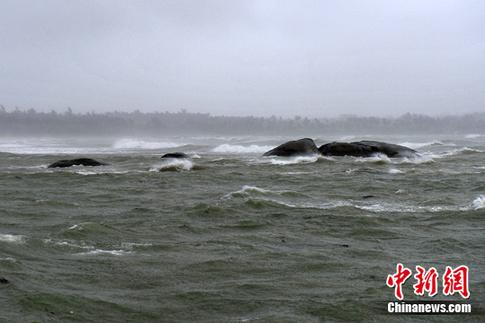 沿海地区登陆,受其影响,与海南岛毗邻的广东徐闻县当地香蕉大面积受损