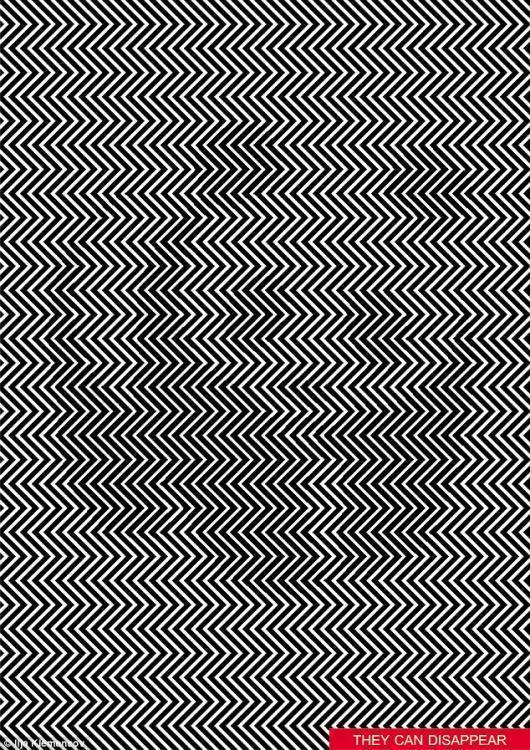考眼力:斜线里隐藏的熊猫