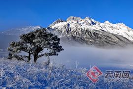 @四海宾朋:万博manbetx手机版下载冬日有四季,邀你来共赏!